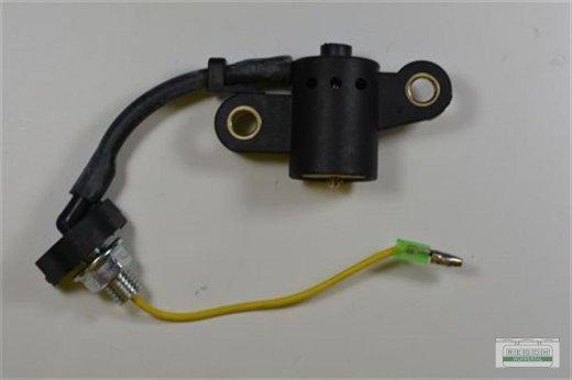 Ölfüllstandsschalter Ölmangelschalter passend Honda GX390