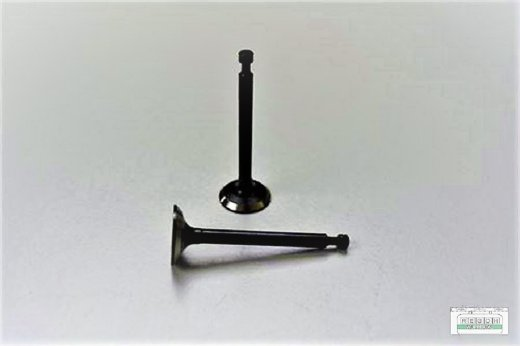 Ventilsatz Einlassventil Auslassventil passend Loncin G200 F, G200 F/D